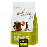 PADOVAN WELLNESS MIX for GUINEA PIGS